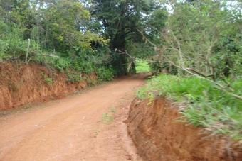 Estradas rurais (6)