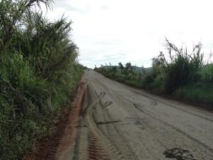 estrada-borda-1